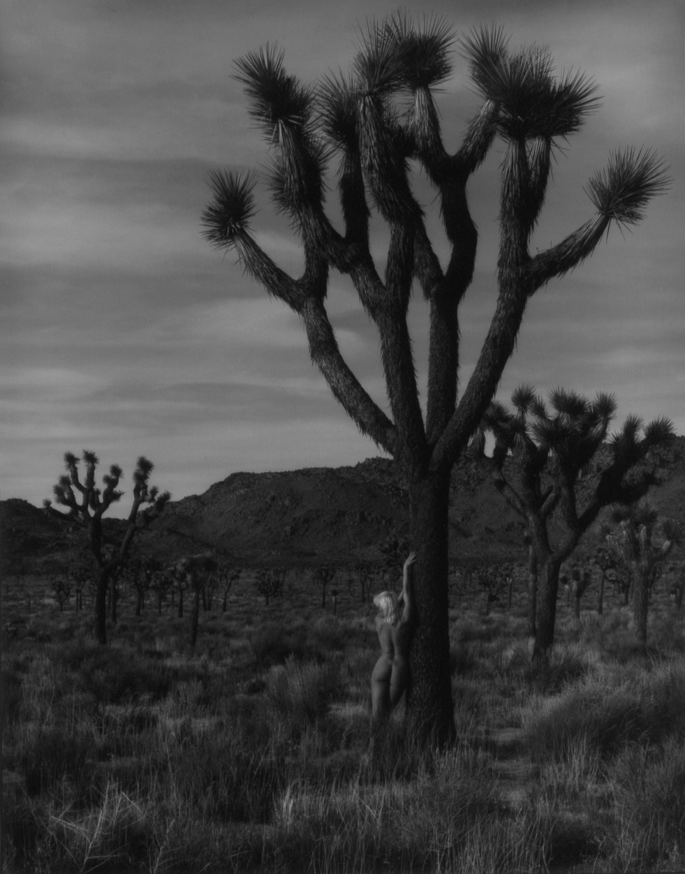 Heidi Leaning Against Joshua Tree.jpg