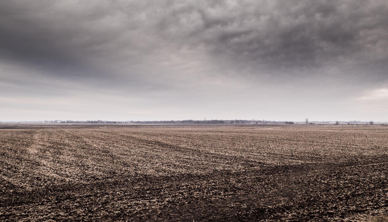 Farmland-010.jpg