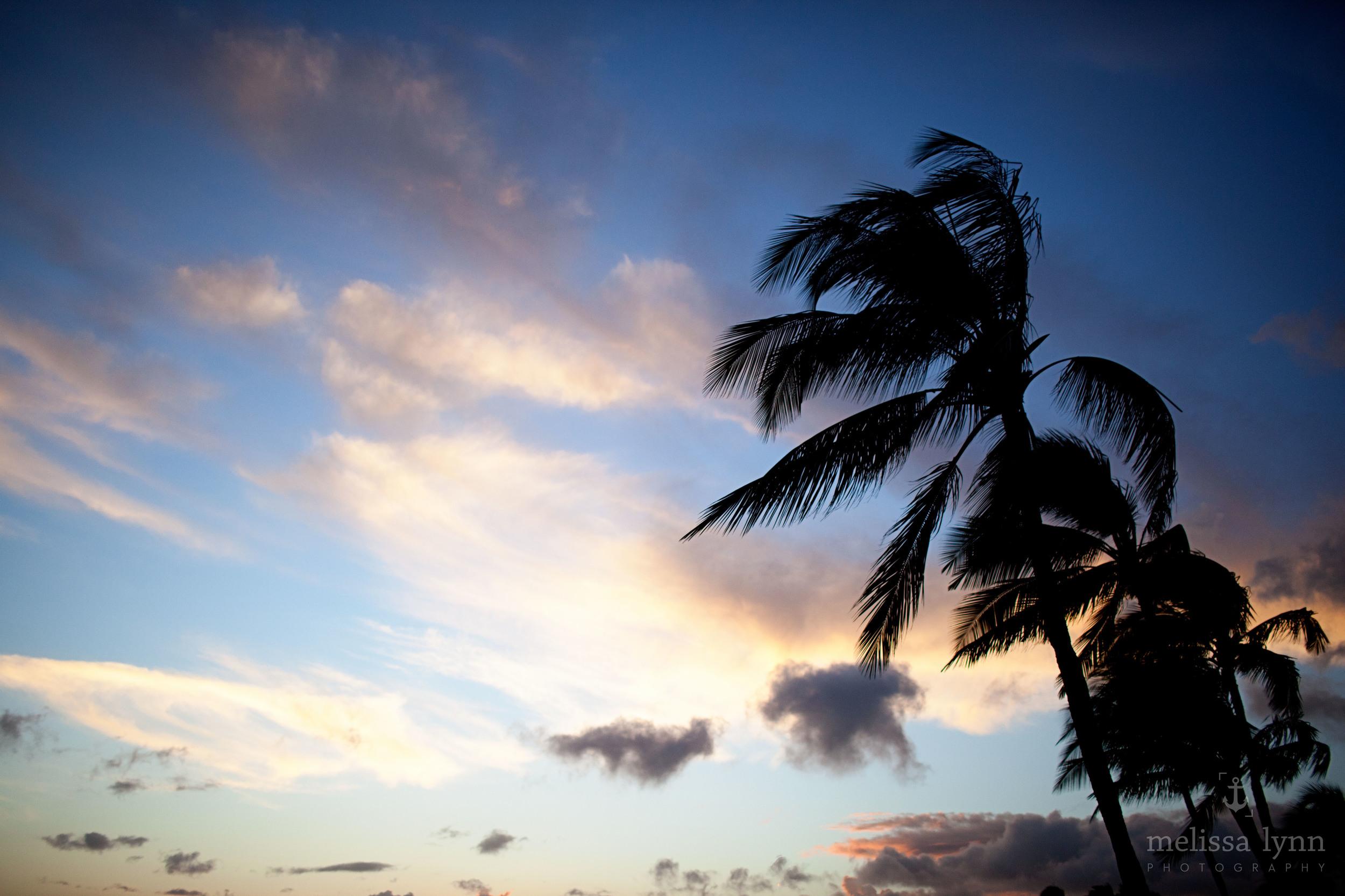kauai_web-12.jpg