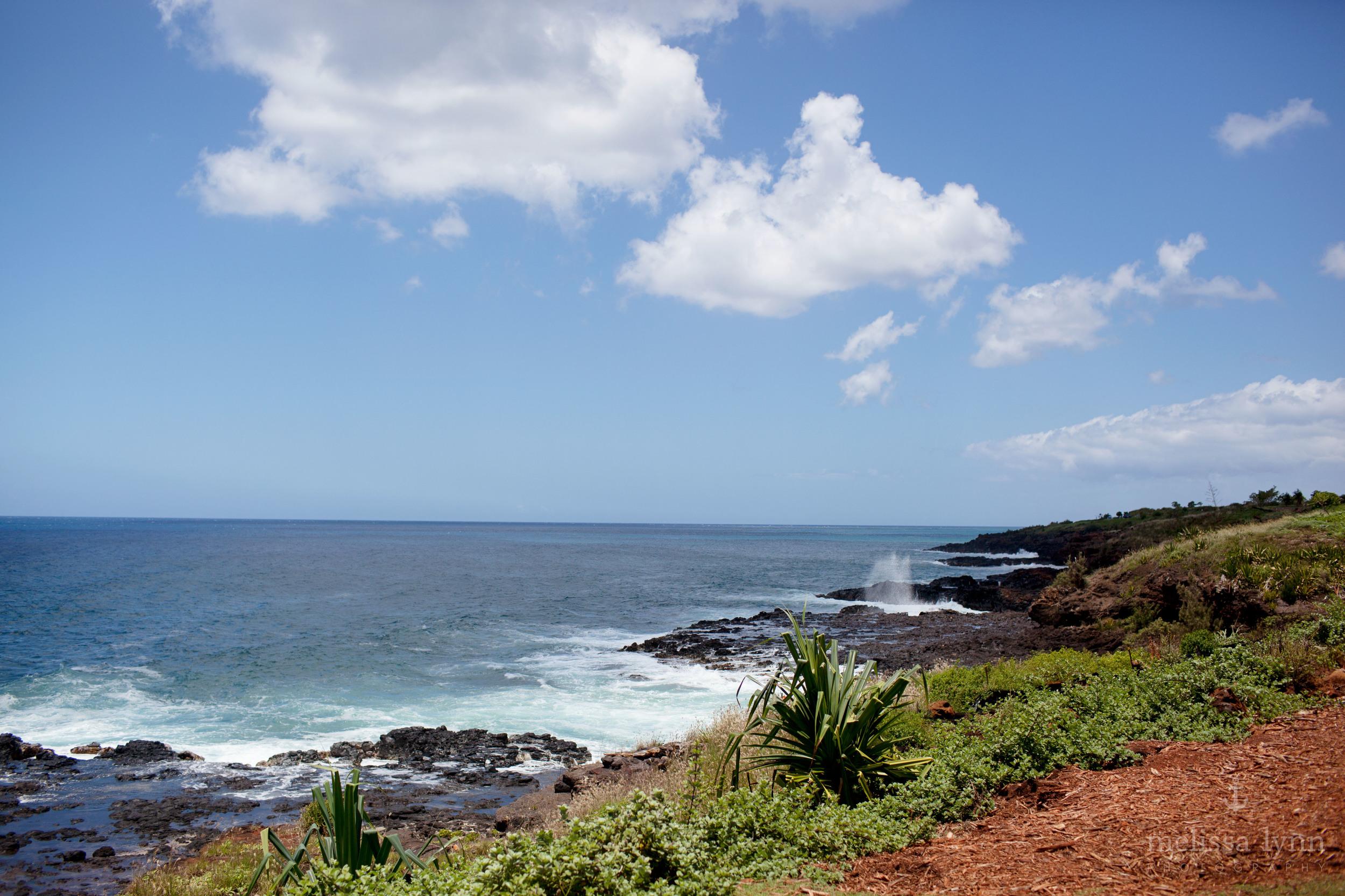 kauai_web-16.jpg