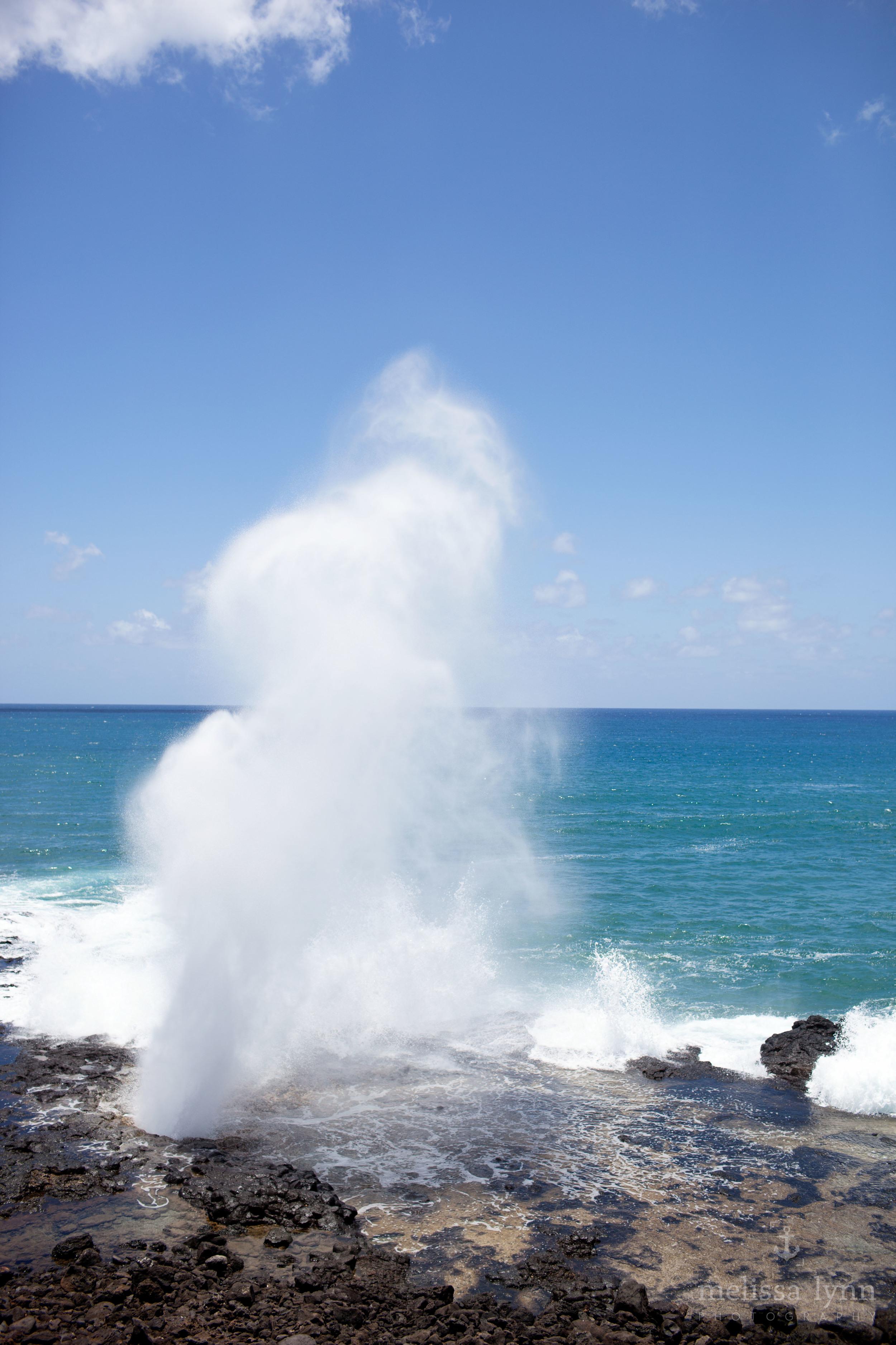 kauai_web-17.jpg