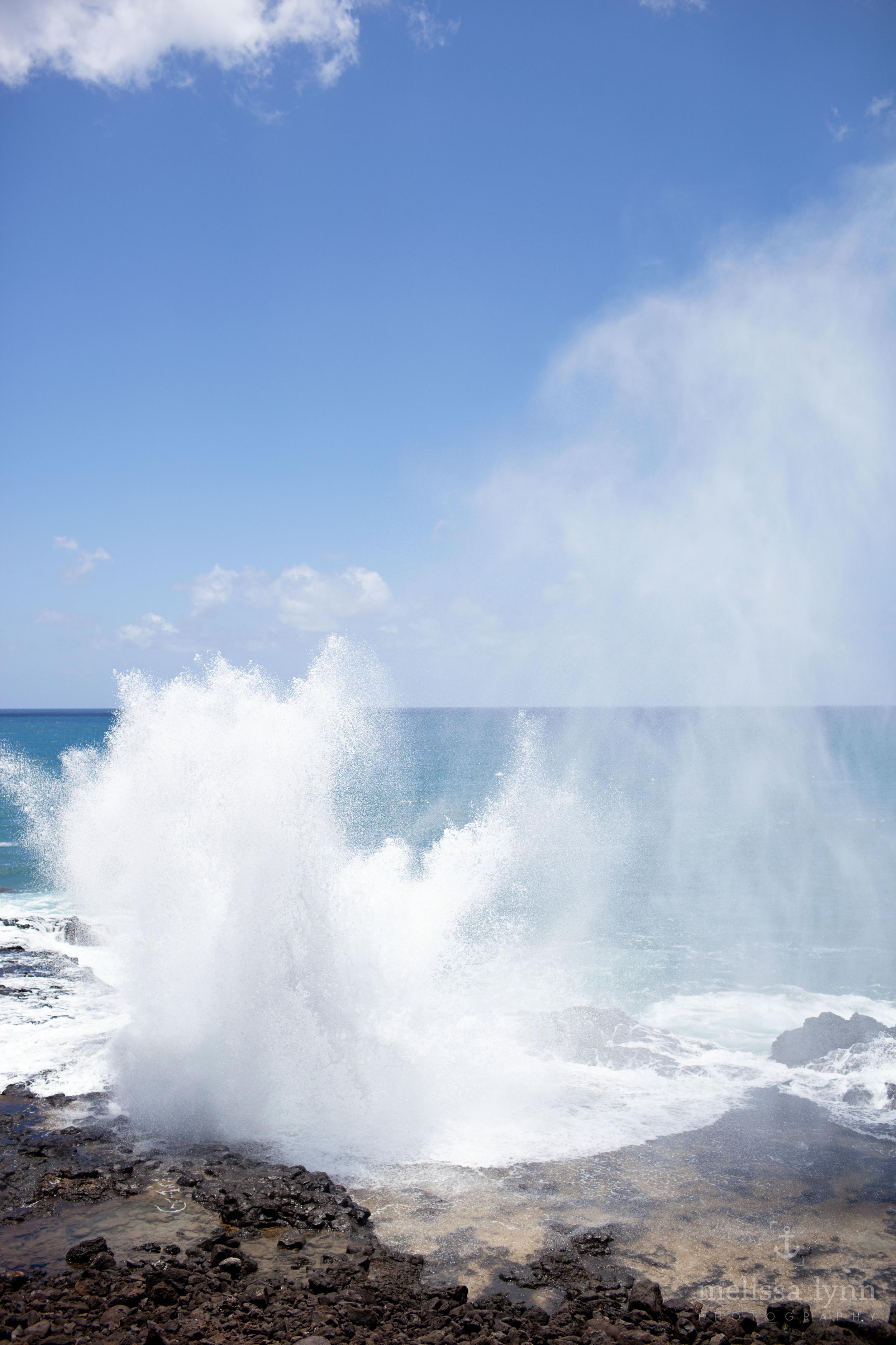 kauai_web-18.jpg