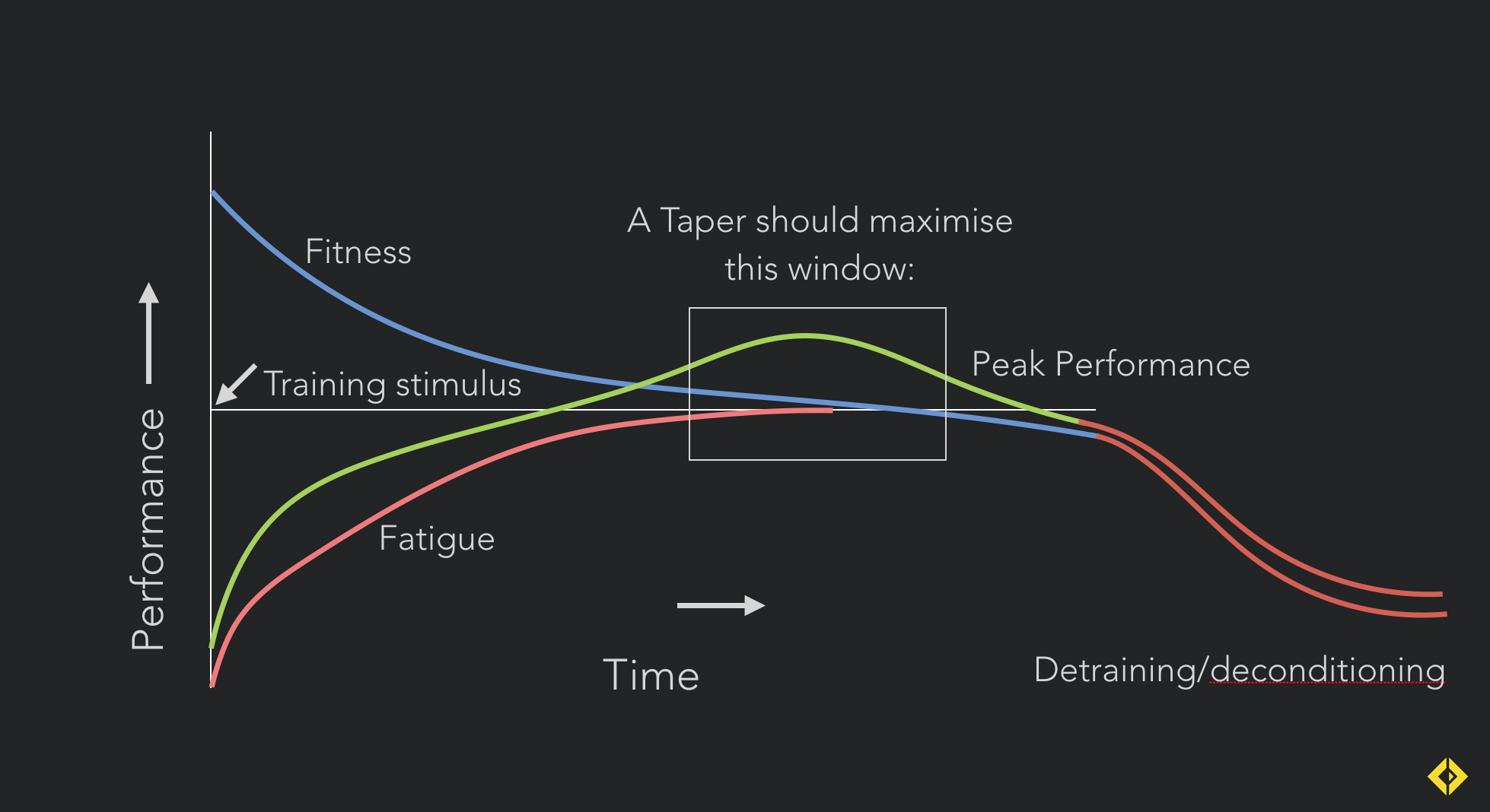 Fatigue masks fitness: When tapering, your window of peak performance occurs when fatigue dissipates faster than fitness.