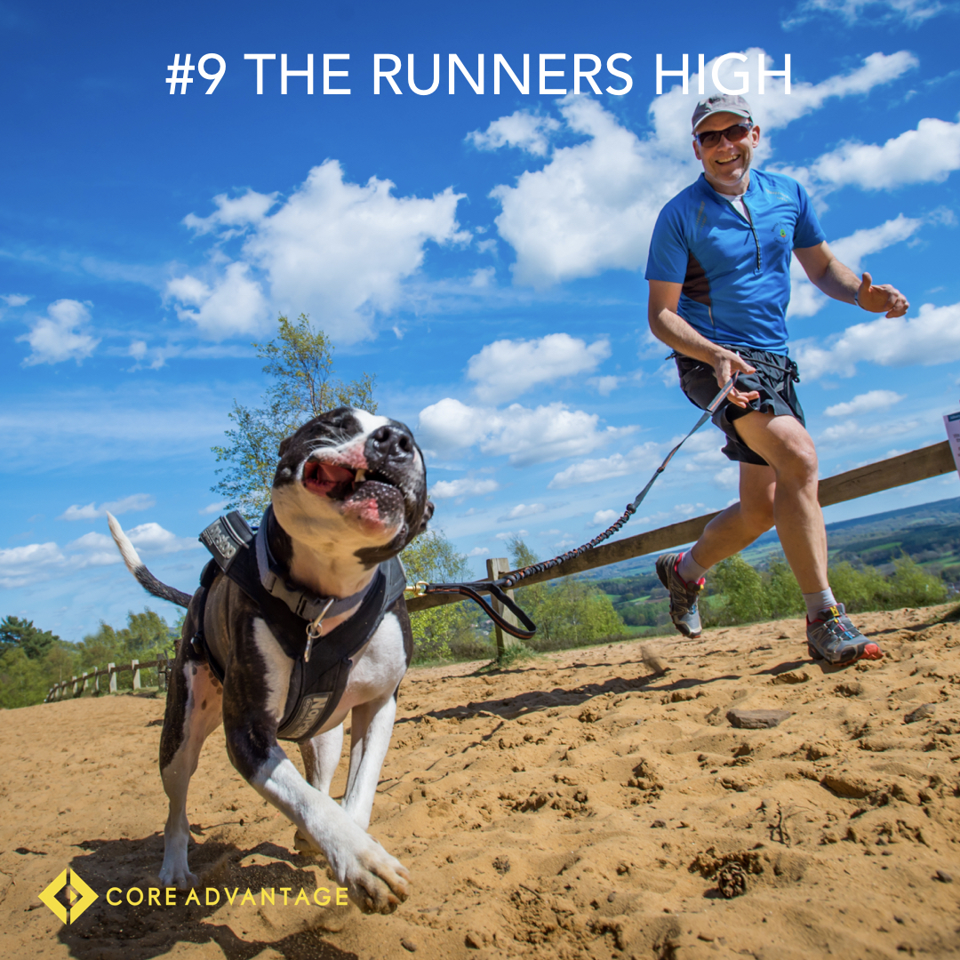 #9 The Runners high