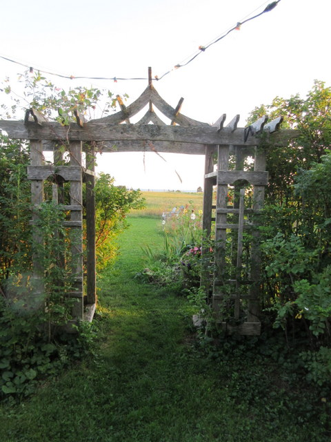 Field and sea through the arbour.