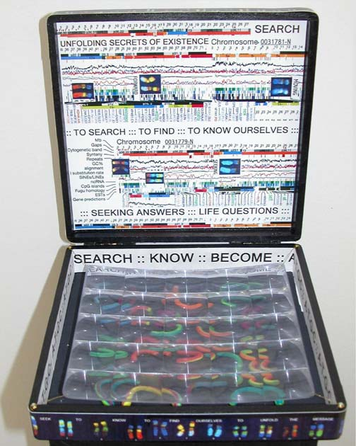 Neva Setlow-Chromosome Box #2-Sq.jpg