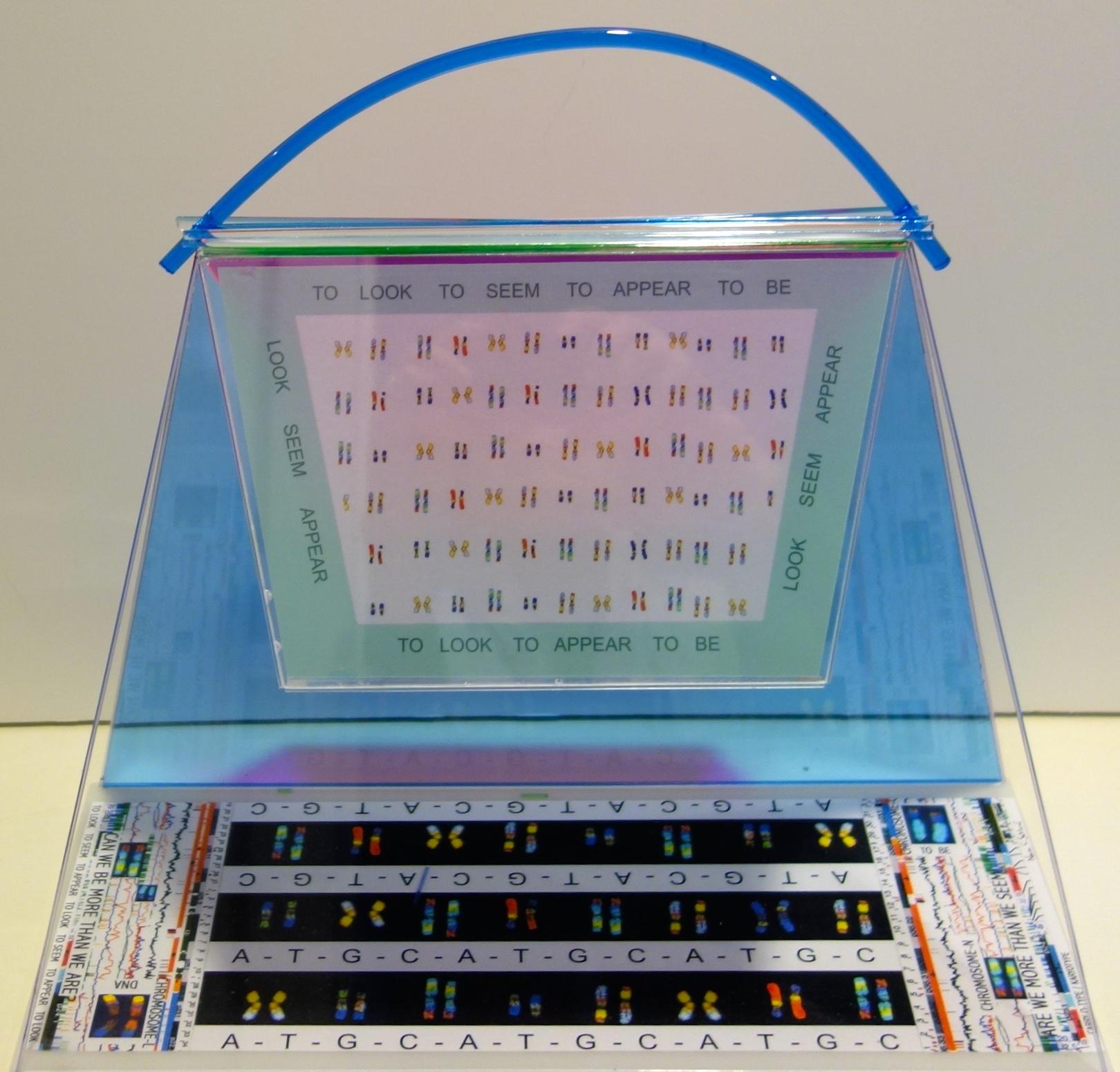 chromosomal Handbag view 1.JPG