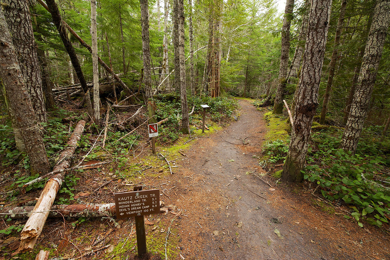Trailhead for Kautz Creek Trail