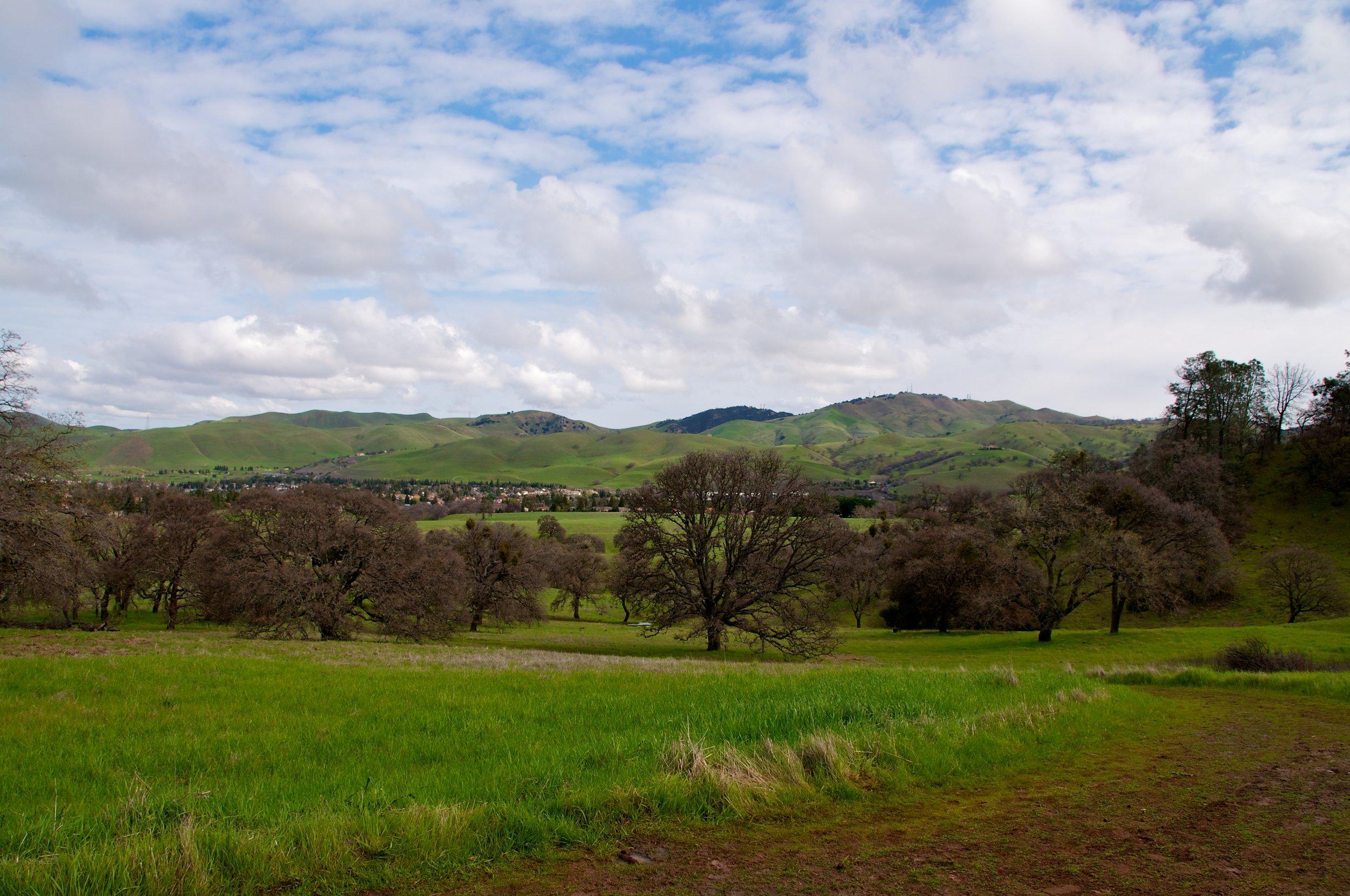 Mt. Diablo Hike 2_12_2011 - 2011-02-21 at 10-33-01.jpg