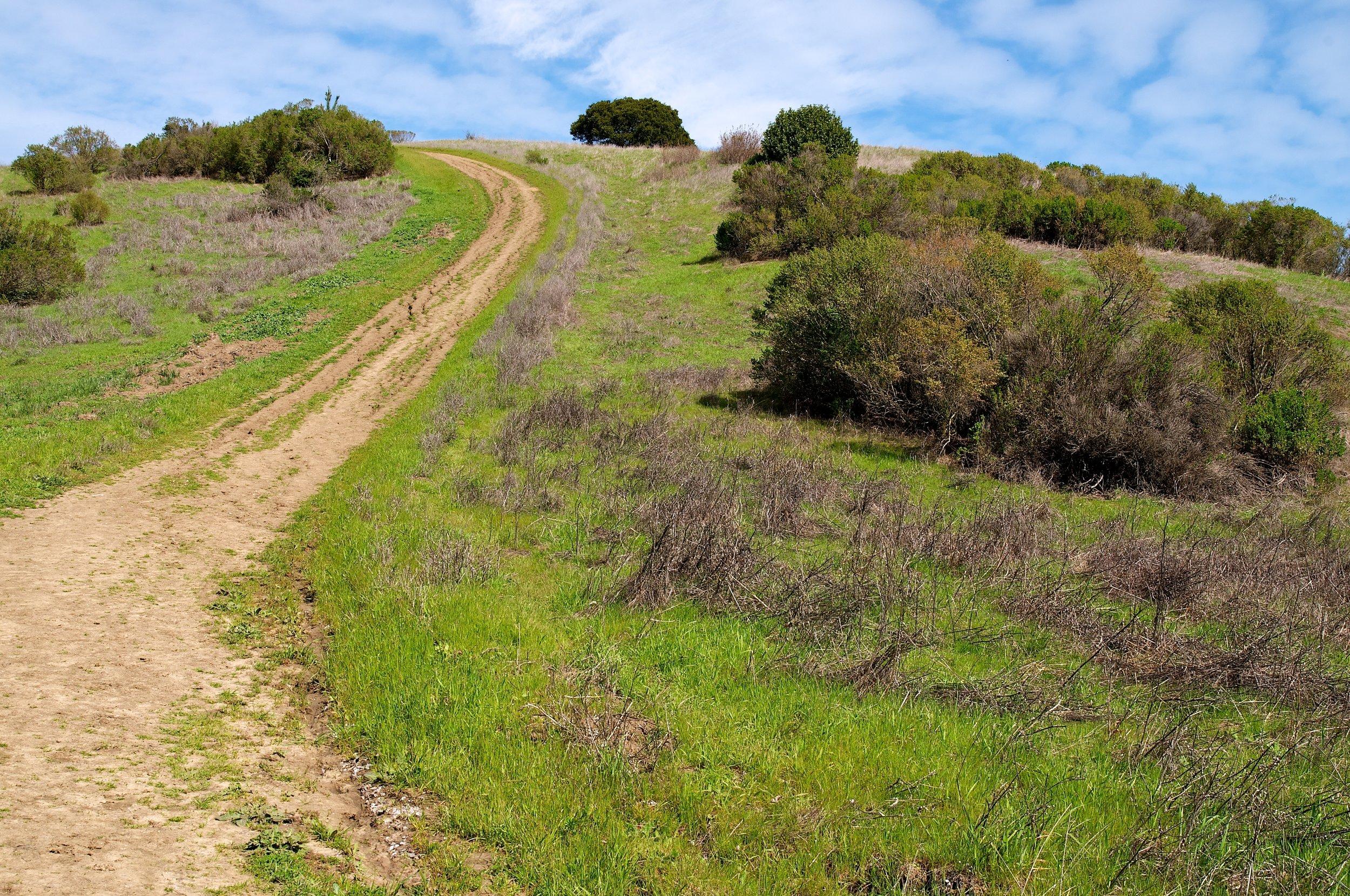 Rim trail 3_5_11 (71).jpg