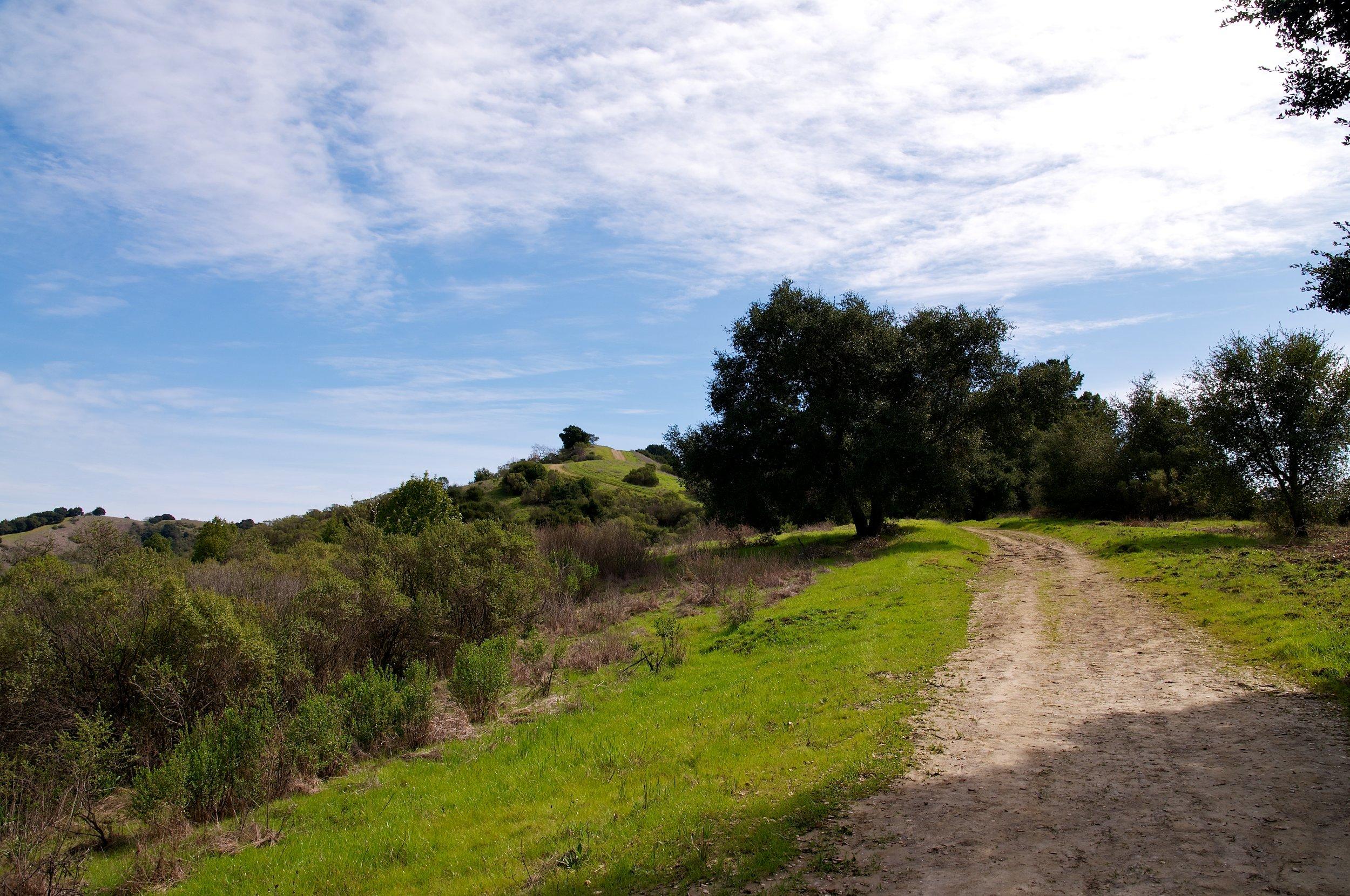 Rim trail 3_5_11 (74).jpg