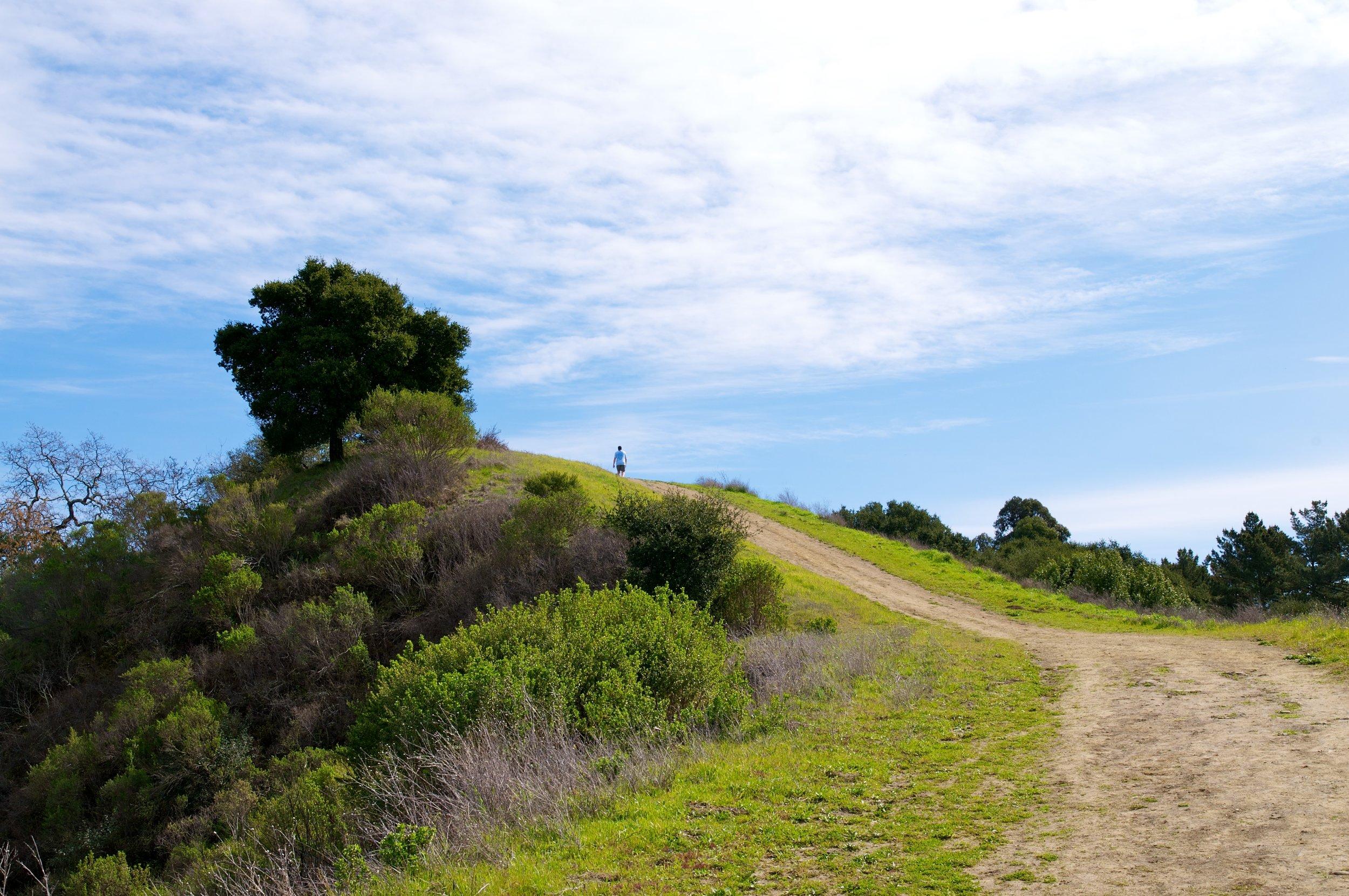 Rim trail 3_5_11 (79).jpg