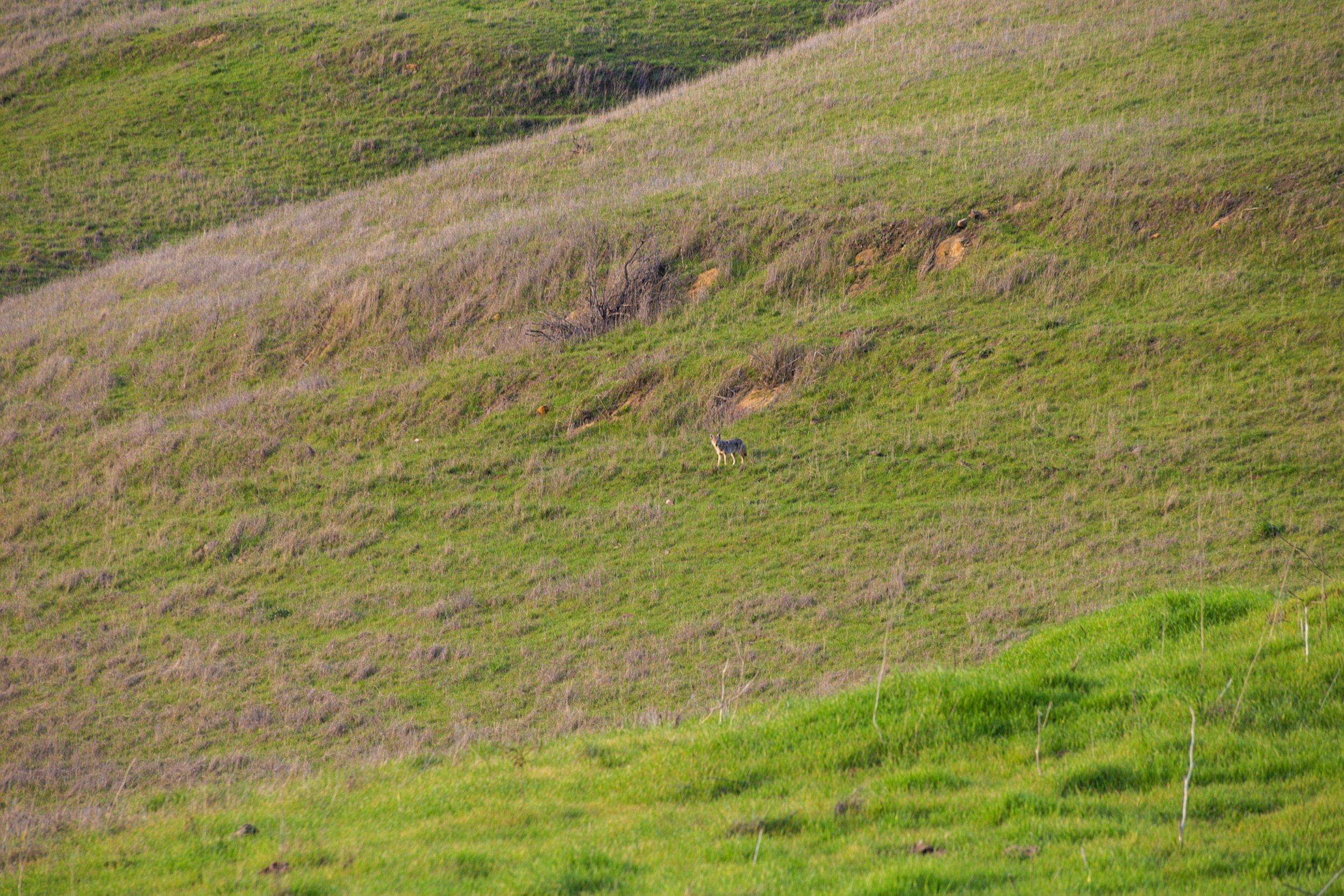 Oursan Trail-86.jpg