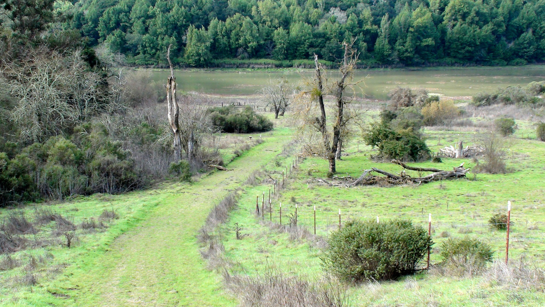 Rimer Creek_-12.jpg