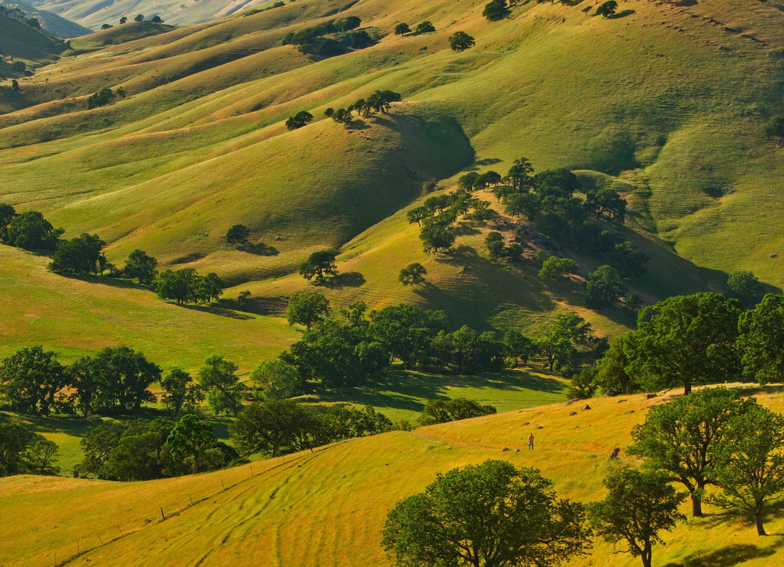 Round Valley - Round Valley Regional Preserve