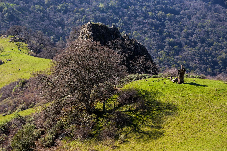 bm Little Yosemite Backpack McCorkle-2.jpg