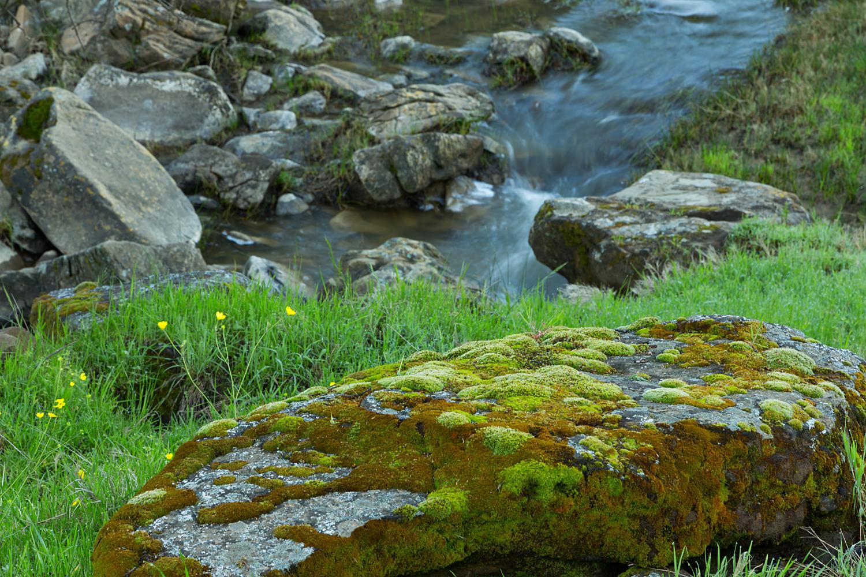 Round Valley Miwok Trail-5.jpg