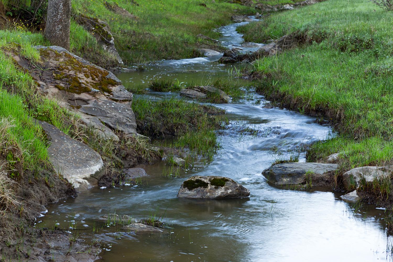Round Valley Miwok Trail-4.jpg