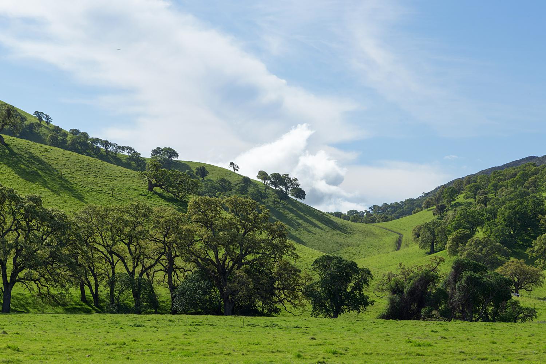Round Valley Miwok Trail-14.jpg