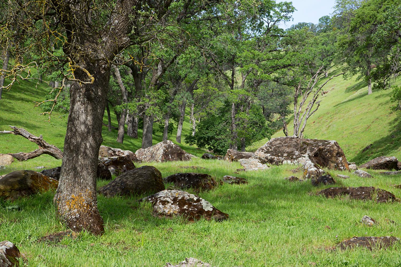 Round Valley Miwok Trail-23.jpg