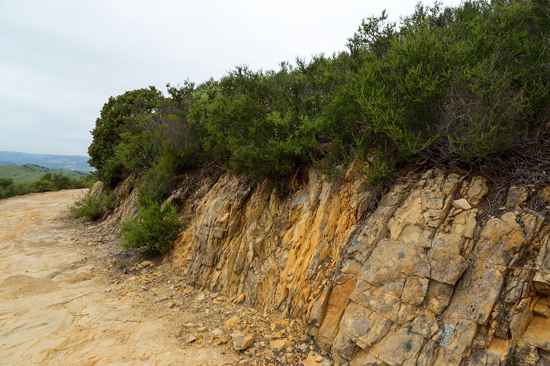 mount diablo state park pine canyon-2.jpg