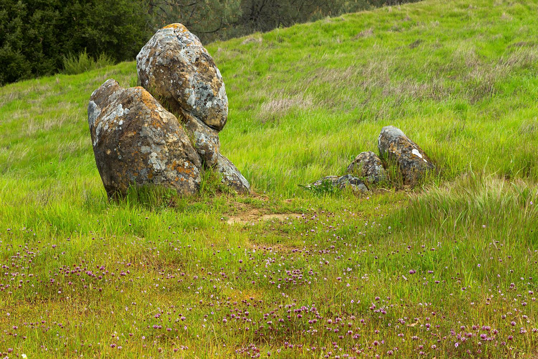 mount diablo state park pine canyon-5.jpg