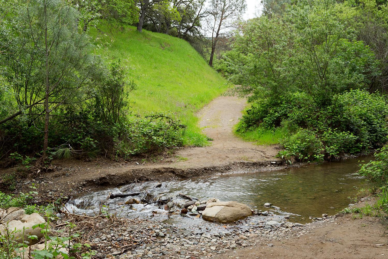 mount diablo state park pine canyon-9.jpg