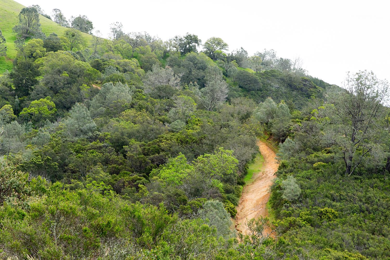 mount diablo state park pine canyon-23.jpg