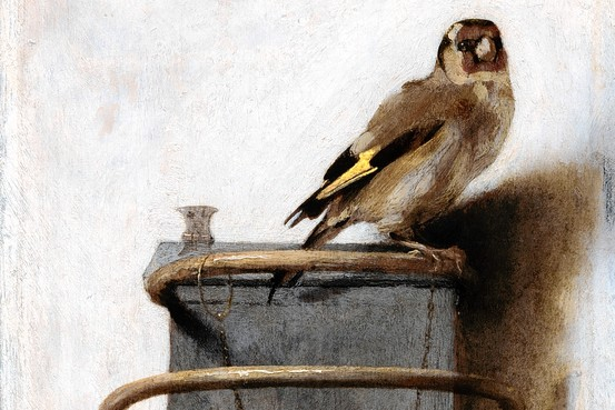 The Goldfinch by Fabritius
