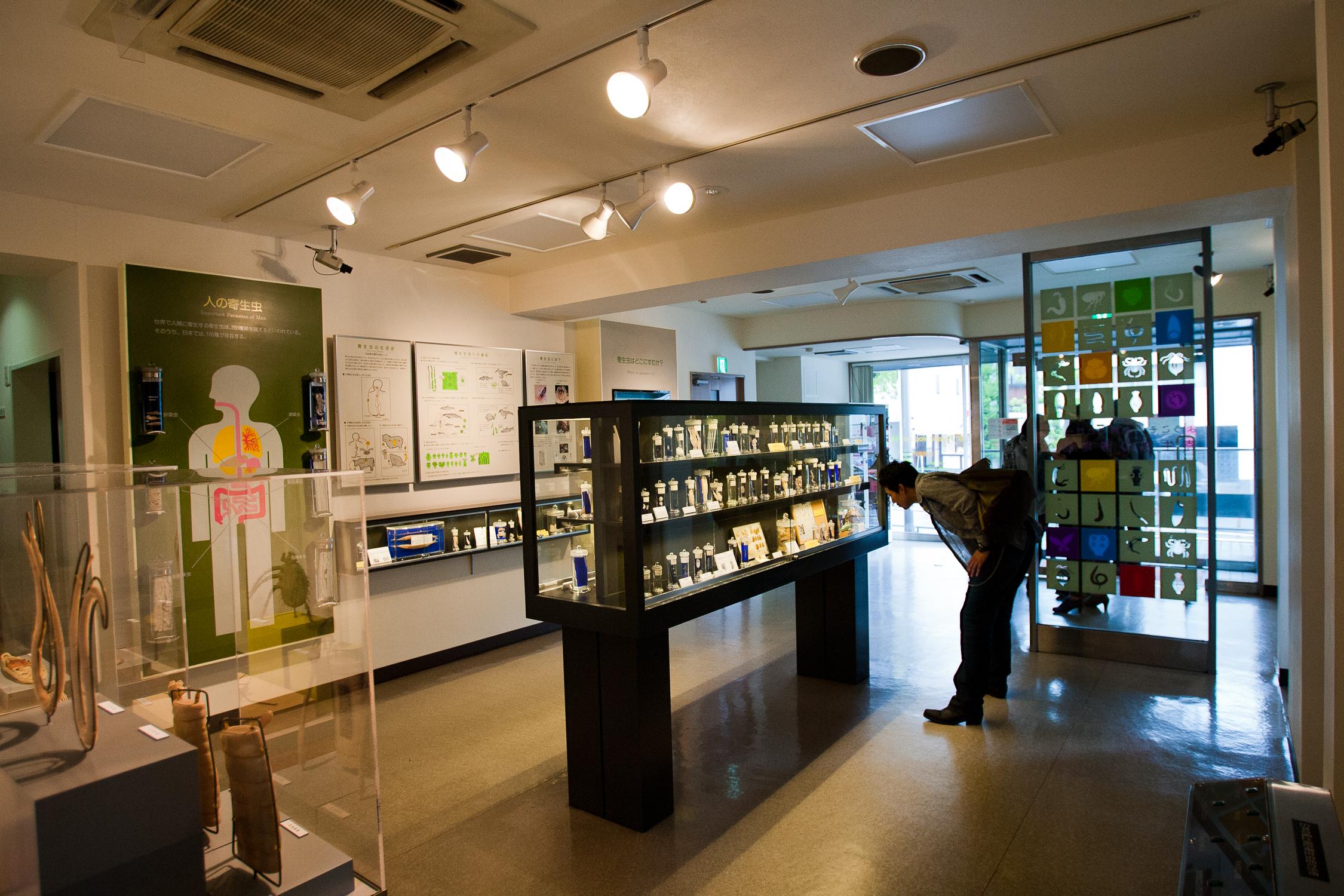 20110423_Meguro_Parasite_Museum_MG_3205.jpg