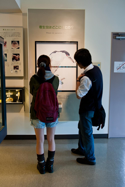 20110423_Meguro_Parasite_Museum_MG_3227.jpg
