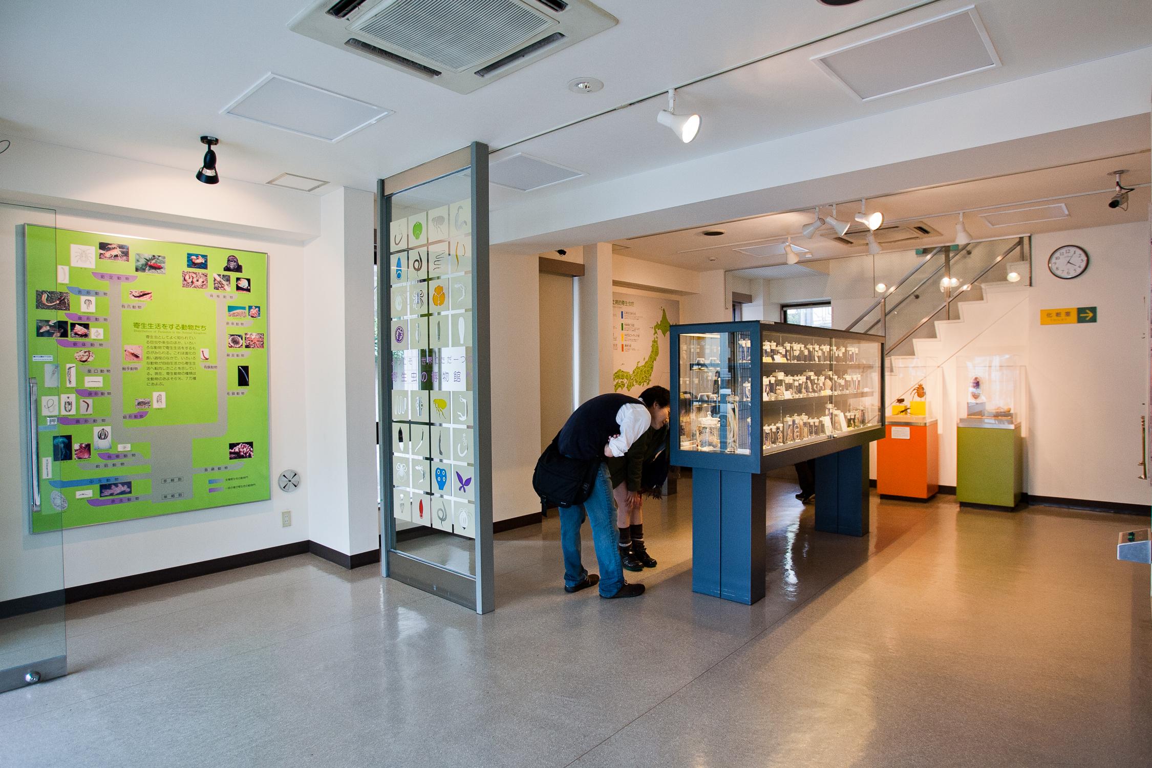 20110423_Meguro_Parasite_Museum_MG_3236.jpg