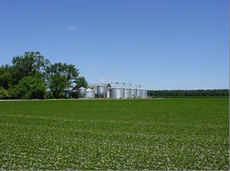 Mauch Family Farm