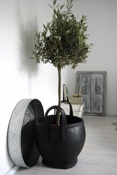 Botanical decoration bringing the outside- inside.