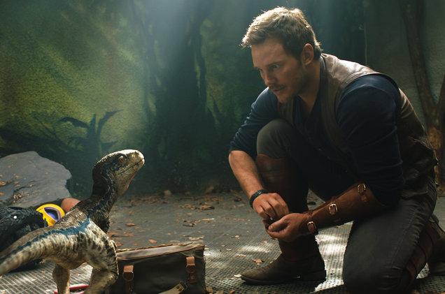 Chris Pratt, velociraptor whisperer. (Universal)
