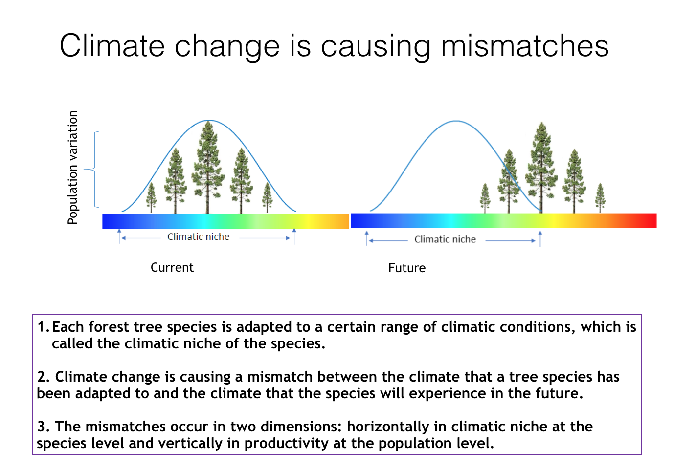 Population diversity of tree heights vs climate conditions