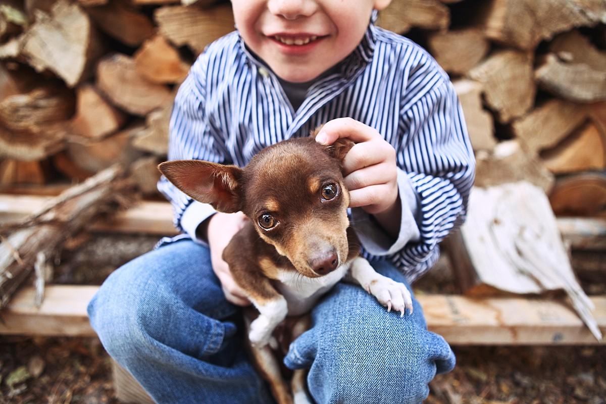 heavenmcarthur-pets-website_0009.jpg