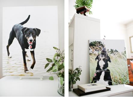 greenchairstudio-wall-art-04.png
