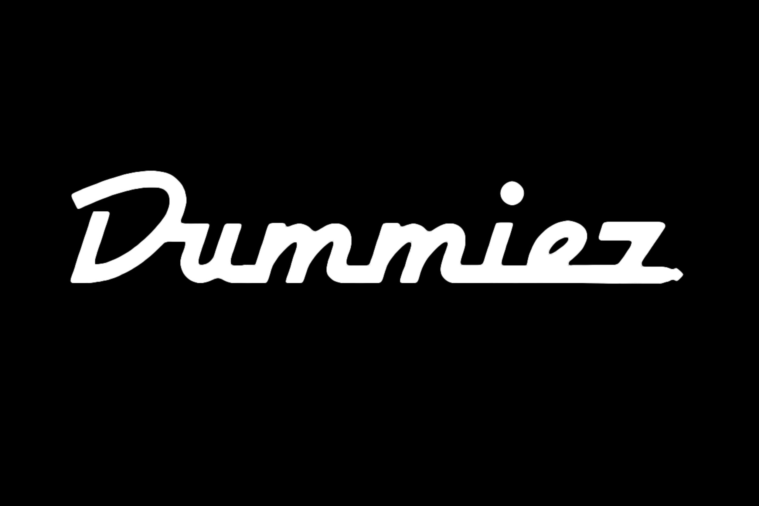 Dummiez • Coming soon in 2019!
