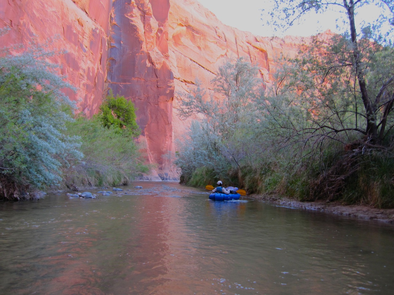 Below Boulder Creek, the river gets reasonably deep and the canyon walls get higher and closer. Here's where the Escalante really shines.