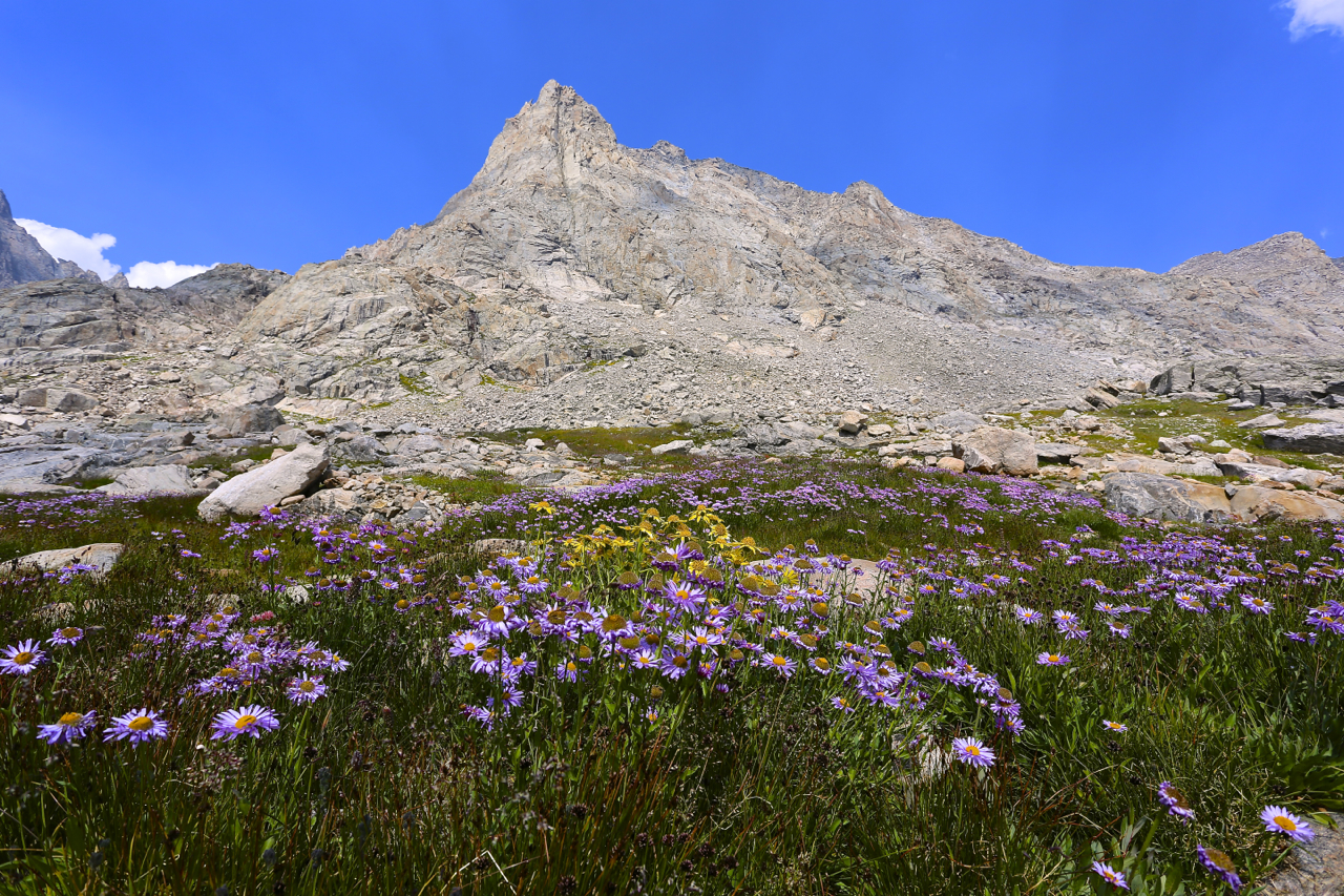 Indian Basin, Wind River Range. So much of the high country in the Wind Rivers is perfect alpine terrain.