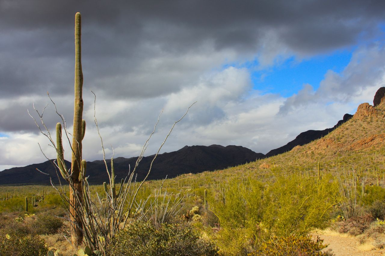A clearing storm lights up the desert as the main spine of the Tucson mountain lies draped in the shadow of the clouds.