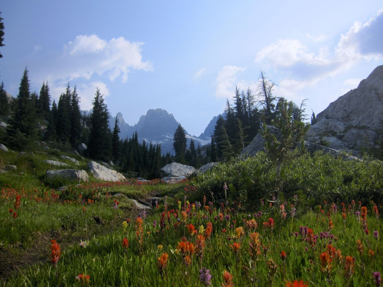 Indian Paintbrush and the Minarets near Ediza Lake