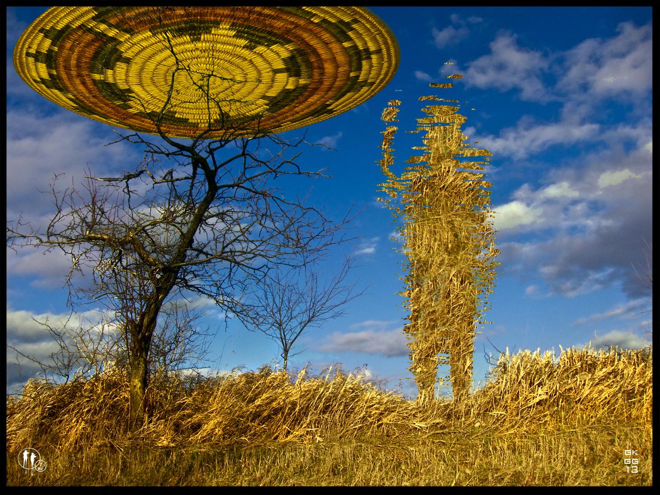 Grassland UFO_web.jpg