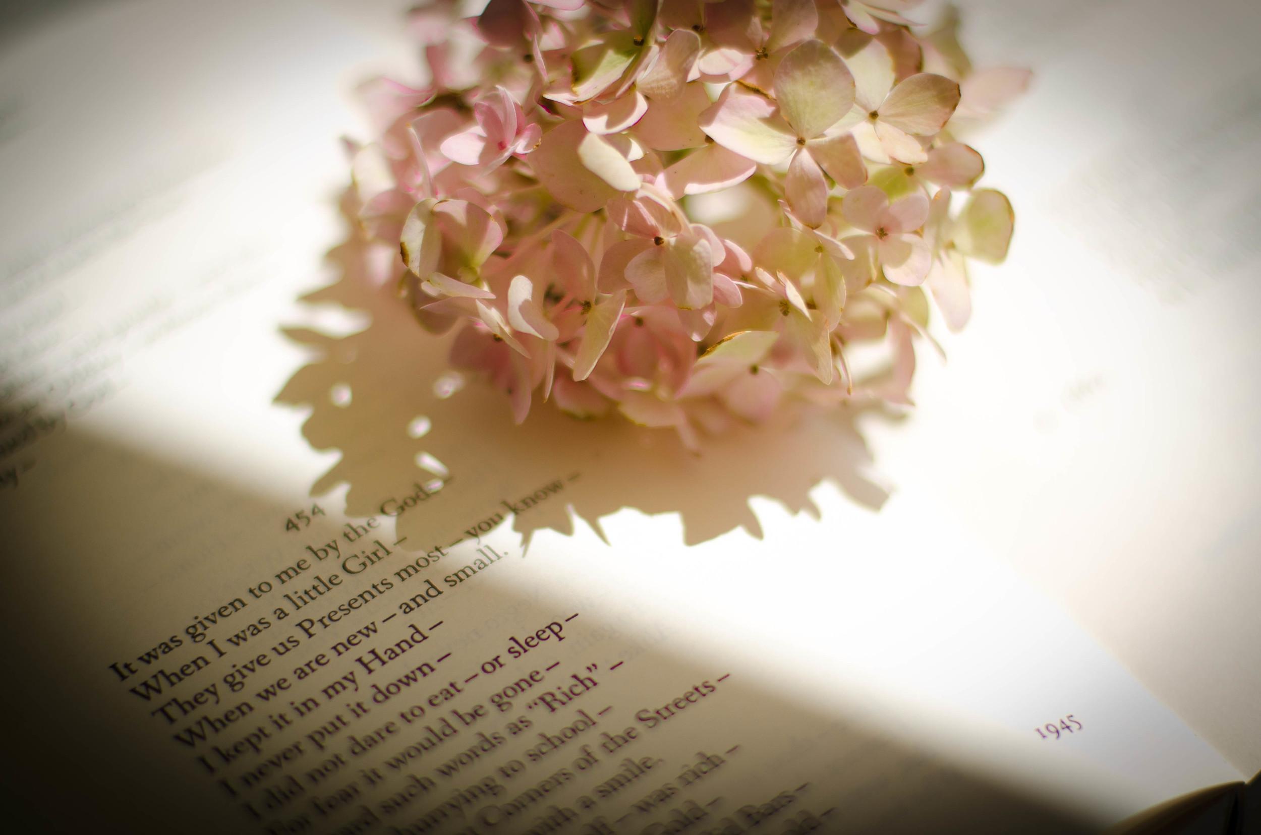 floralbook