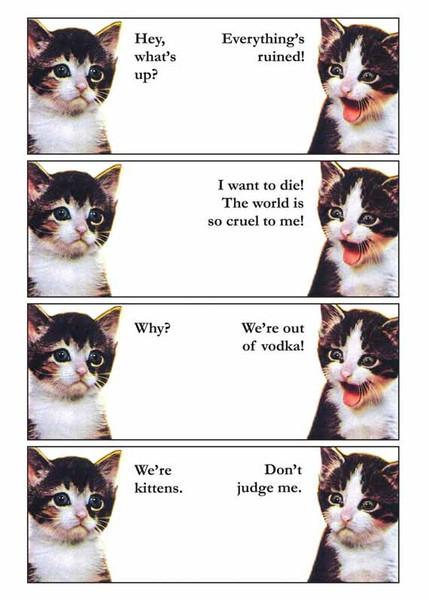 card_vodka_cats_web_grande.jpg