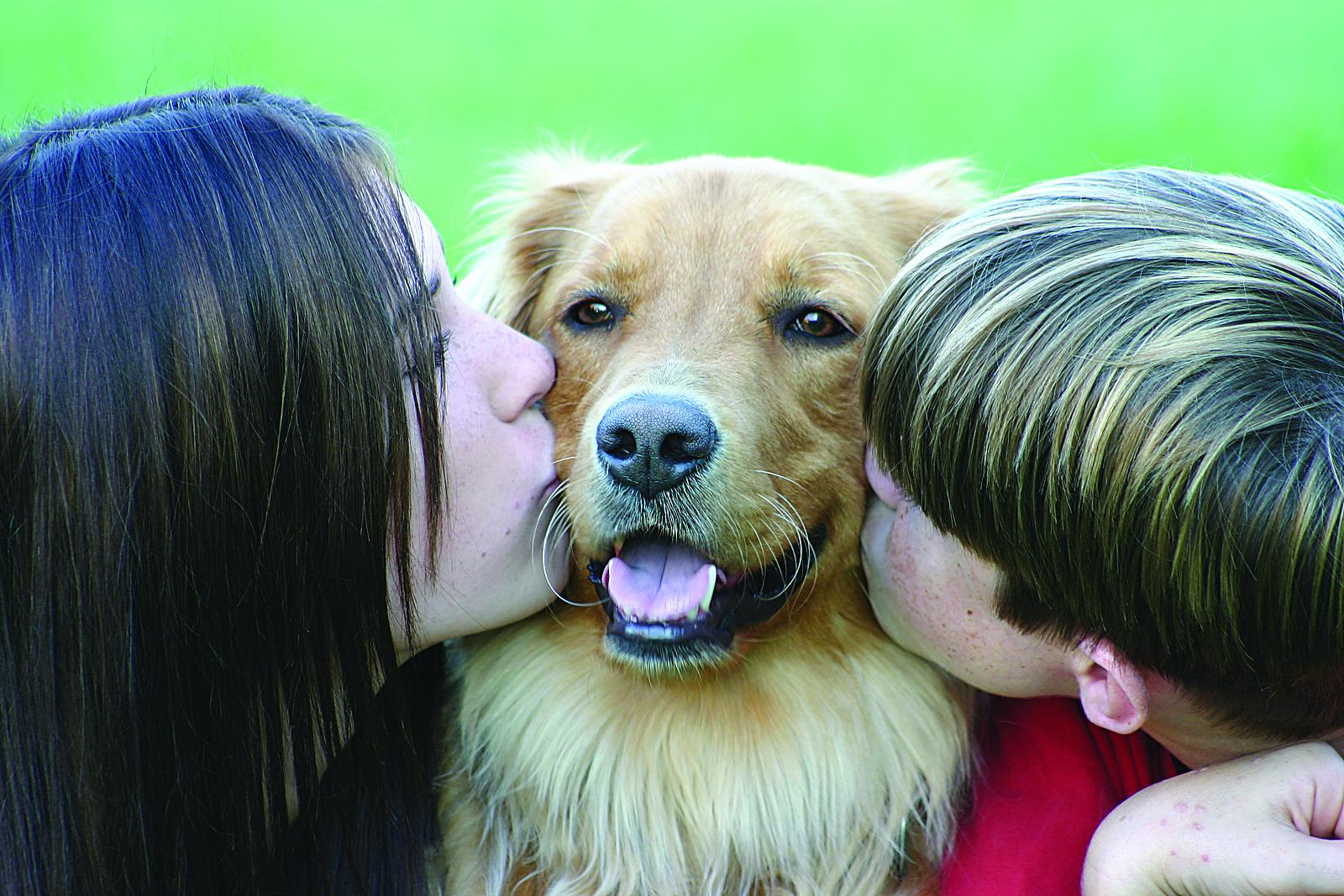 bigstock_Dog_and_Kids_768827_1 from petsafesolutions au.jpg