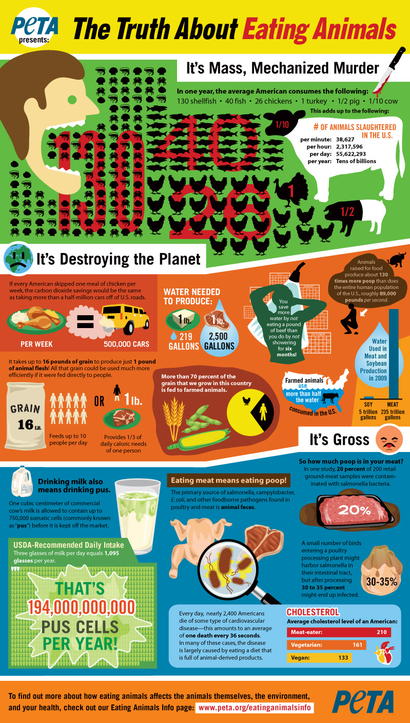 truth-about-eating-meat-infographic.jpg