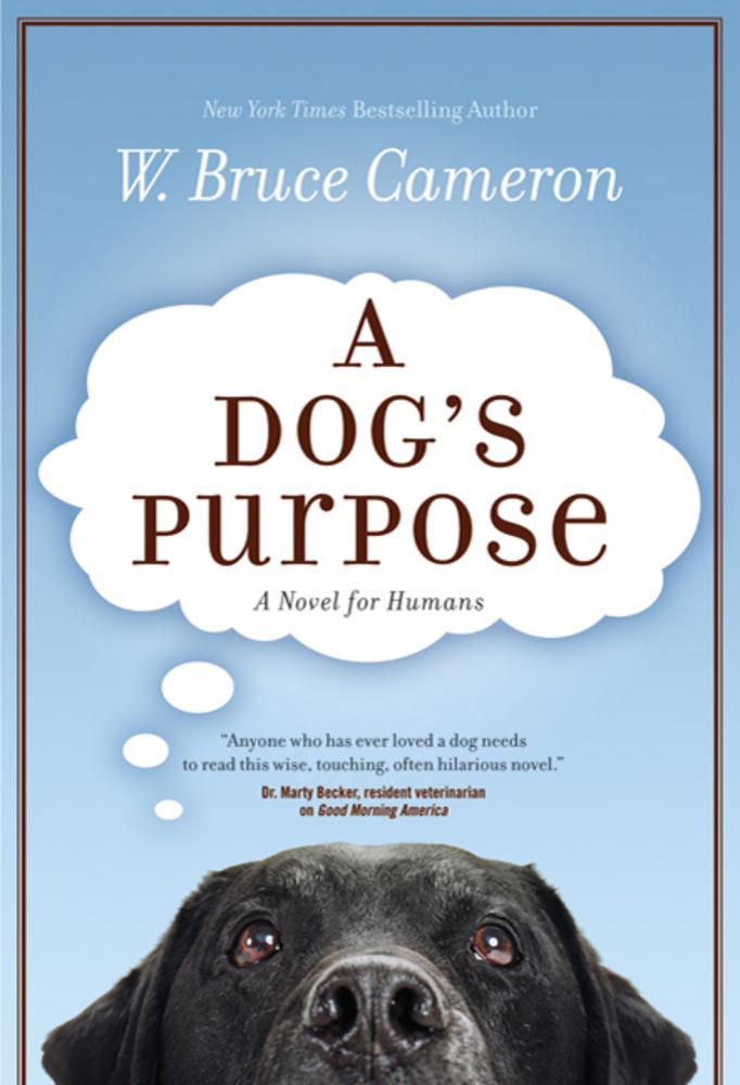 a dogs purpose.jpg