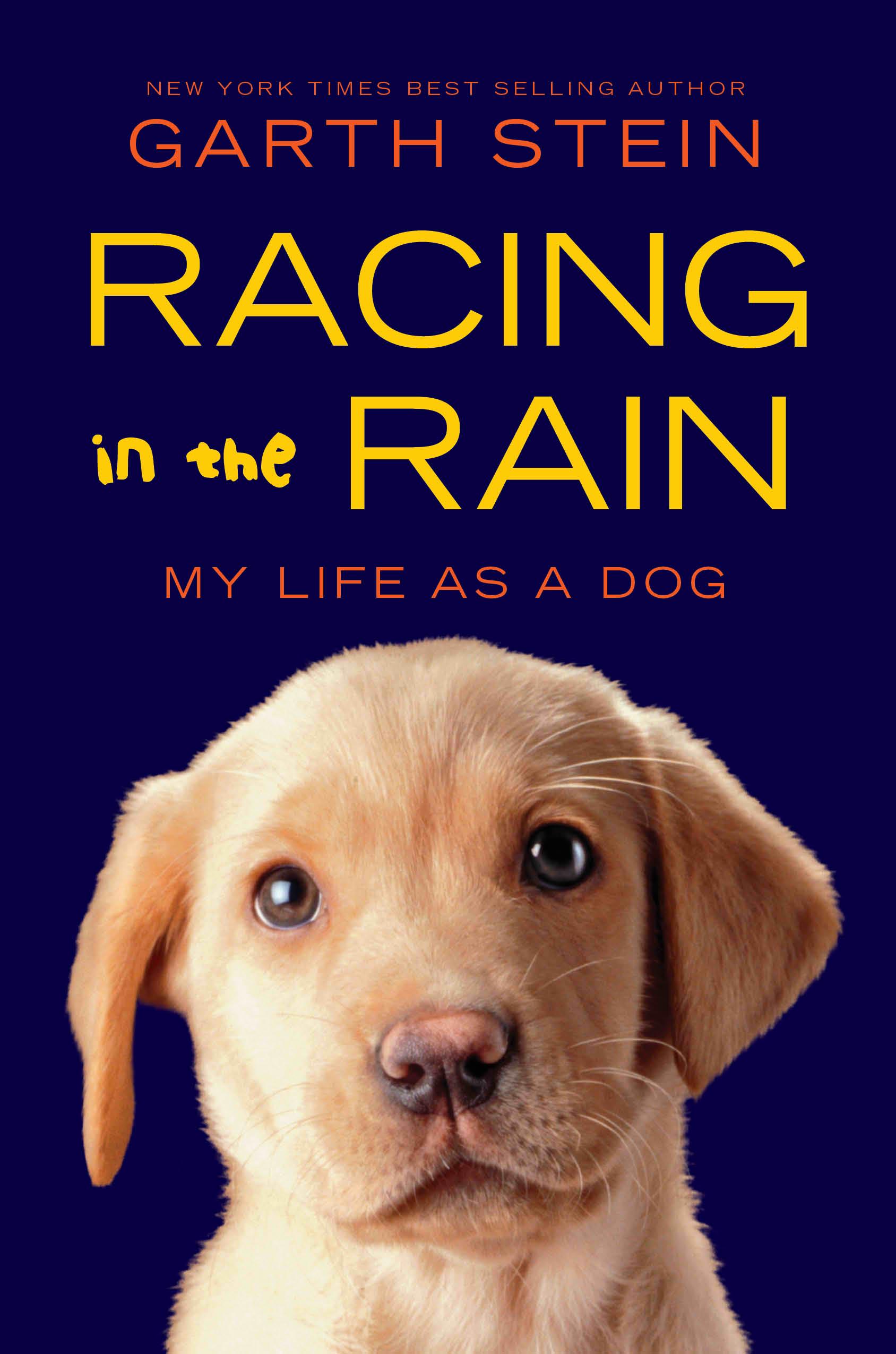 Racing-in-the-Rain2 paperback.jpg